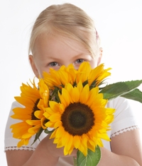 Sunflower Fundraiser